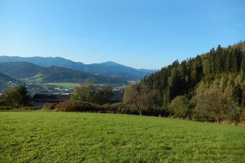 BAUTRÄGER ACHTUNG! 6.000m² erhabenes Bauland am Herzogberg über Kindberg (3095)