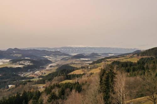 Bastler-Hütte mit Wald und Wiese im Lavanttal am Magdalensberg (3127)