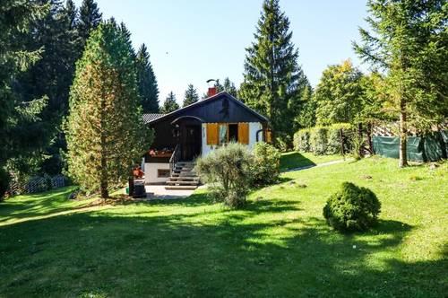 Haus auf der Pack in ruhiger Lage - die Natur genießen