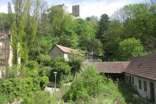 Singlewohnung in Greifenstein zu vermieten