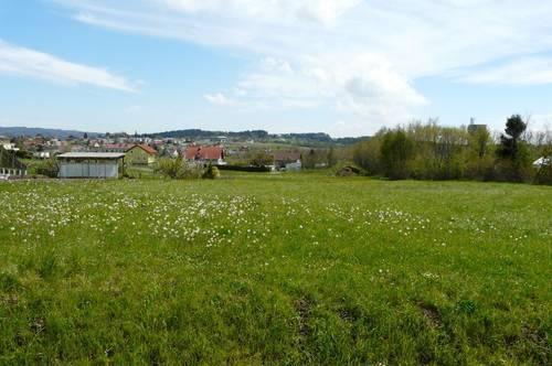 Toplage - Großer sonniger Baugrund ( 2.609 m² )