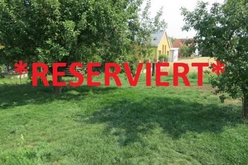 Horn/Frauenhofen: Sehr geräumige, helle Mietwohnung mit Gartenbenützung