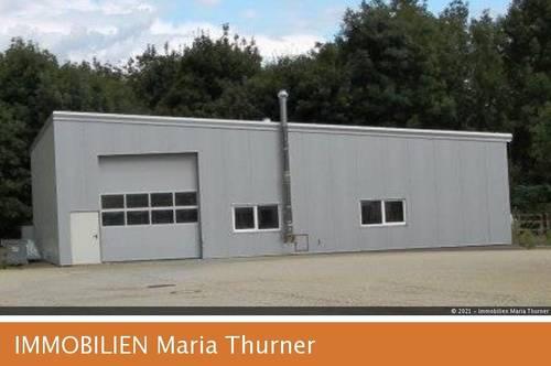 Betriebsobjekt - Neubau - Industriehalle - Kauf