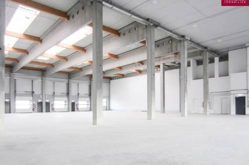 Lagerhalle 1460 m2 südlich von Wien in Wr. Neudorf