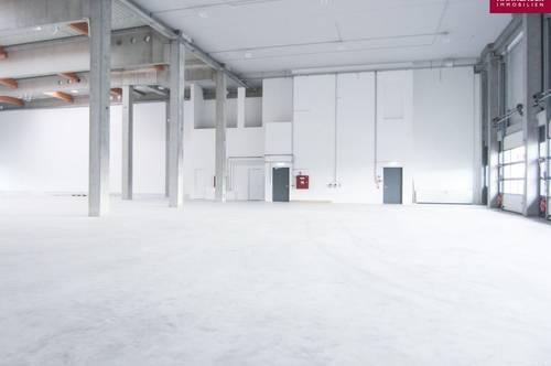 Lagerhalle 1600 m2 + Büro 341 m2 Kombination südlich von Wien in Wr. Neudorf
