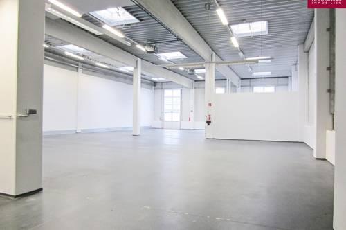 Lagerhalle 227 m2 südlich von Wien, in Wr. Neudorf zu mieten