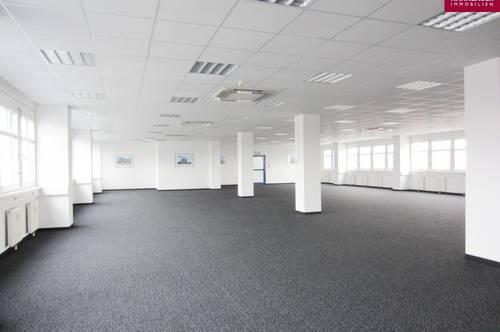 Lagerhalle 1962 m2 + Büro 452 m2 Kombination südlich von Wien, in Wr. Neudorf