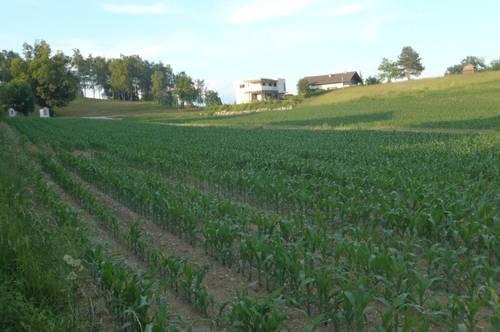 Grundstück in ruhiger zentraler Dorflage mit Bergaussicht