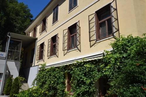 Helle 2-Zimmer-Wohnung in zentraler Lage