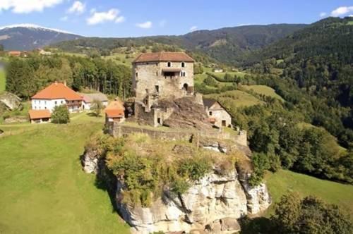 Wunderschöne, einzigartige Burg in Alleinlage mit Traumblick über Kärnten in Ruhelage, Wolfsbergnähe