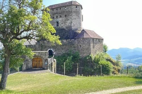 Wunderschöne, einzigartige Burg in Alleinlage mit Traumblick in absoluter Ruhelage