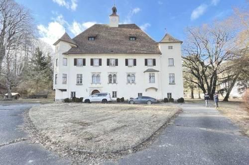 Kärnten, wunderschönes Schloss, mit große Parkanlage