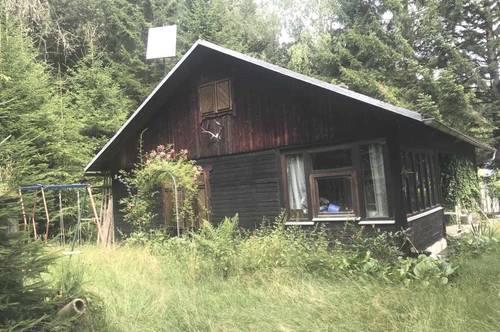 Alleinlage, Almhütte am Waldrand in echte Ruhelage, Ferienhaus