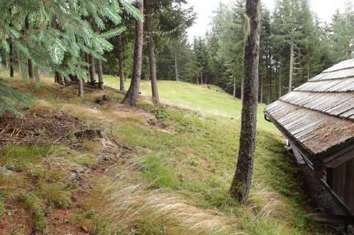 MIETE: Saniertes Bauernhaus 115 m² Wfl. ZH-Holz, in ruhiger Alleinlage
