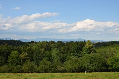 Hönigtal Grundstück für Ein- oder Mehrfamilienhaus oder kleineren Gewerbebetrieb. Sehr schöner Panoramablick nach Norden.