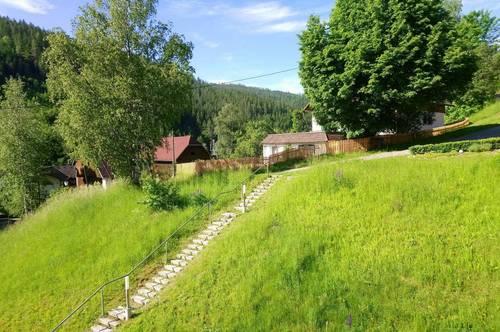 Wohnen wo andere Urlaub machen - Grün-/ Ruhelage in den Kärntner Nockbergen/Sirnitz - unbefristet