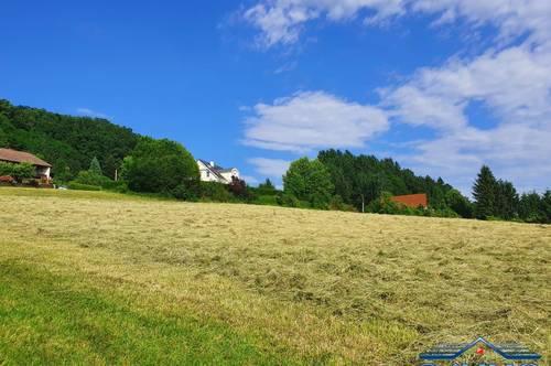 SÜD-Oststeiermark: Circa 4000m² Bauland mit circa 5000m² landw. Nutzfläche