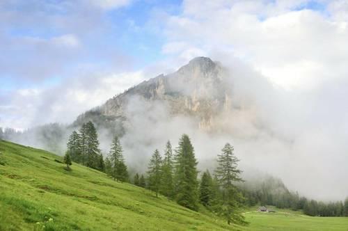 Wunderbare Hochgebirgsjagd in den Nördlichen Kalkalpen