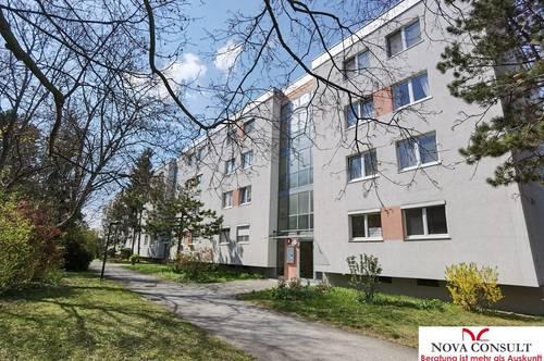 Geräumige 4-Zimmerwohnung in der Gartenstadt Südstadt!