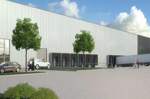 Neubau Logistikflächen neben A3 – bezugsfertig ab Q1 2022