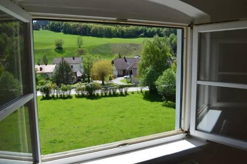 Herrliche Dachgeschosswohnung mit Fernblick - BK ink. Heizung!