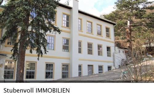 Mödling/Hinterbrühl-Wohnen und Arbeiten in einem! Hauptraum mit 190m²! - Wfl. ca. 270m² und Terrasse!