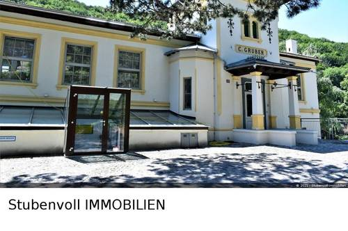 Erstbezug! Luxusloft zum Top-Preis! Wohnen und Arbeiten in Einem! Wfl. ca. 270m² und sonnige Terrasse mit Grünblick!