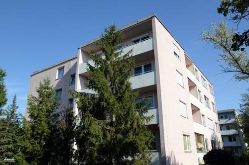 Zweizimmerwohnung mit Loggia - Erstbezug nach Renovierung