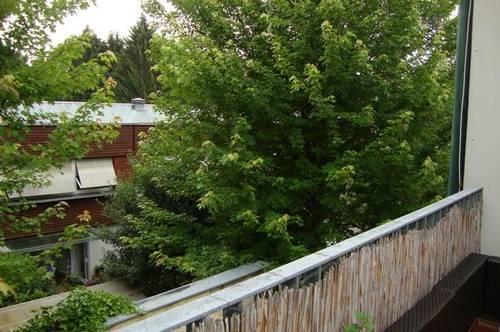 Stadtwohnung mit Galerie - Terrasse - sehr ruhig - sonnig - Nähe Kaiser-Josef-Platz - ab sofort