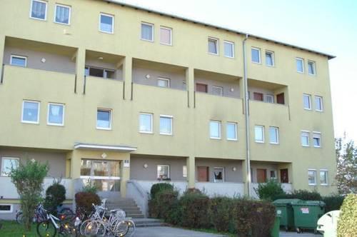 2-Zimmer Wohnung mit Loggia in Enns!