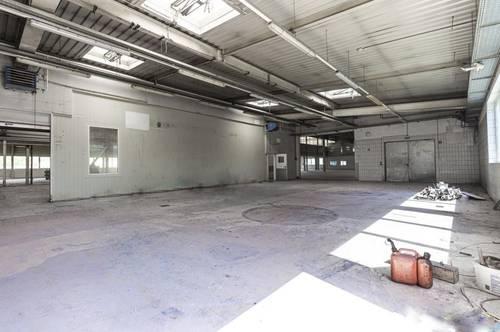 Halle/Werkstatt/Lager mit Büromöglichkeit