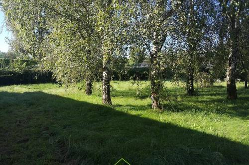 Eigengarten: großzügige Mietwohnung in Krems