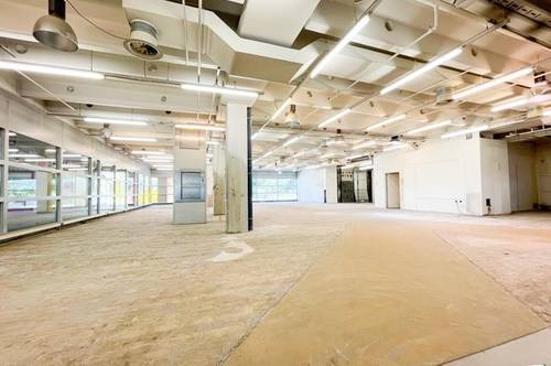 Kaufpark Alt Erlaa - flexible Geschäftsfläche, ablösefrei