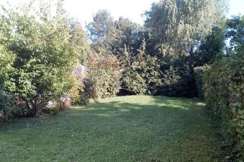 Reihenhaus mit schönem Garten