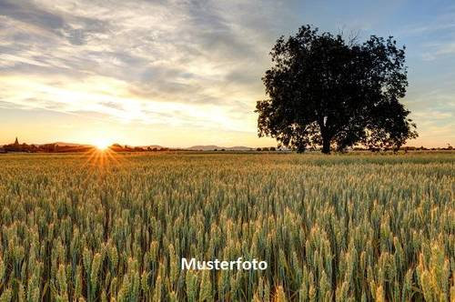 Landwirtschaftlicher Betrieb - Versteigerungsobjekt -