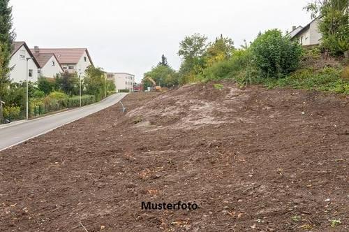 Grundstück, Schönberg am Kamp Versteigerungsobjekt