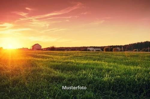 Land und Forstwirtschaft, Lustenau Versteigerungsobjekt