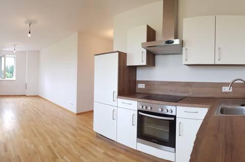 Drei-Zimmer Wohnung. Lebensraum mit viel Licht und Grün