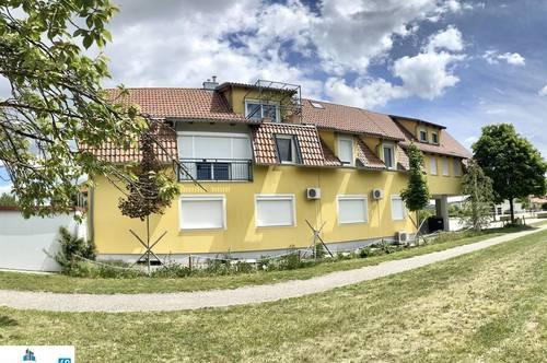 Ordination/Firmensitz (170 m²) - Wohnbereich (310 m²) - Nähe Tulln - für höhere Ansprüche