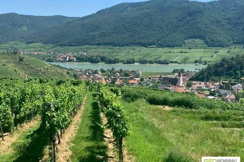 Idyllische Lage bei Freizeitparadies Wachau! Eigene Wohlfühloase bei Krems – Top A2