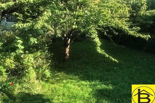 13941 EINFAMILIENHAUS mit Garten