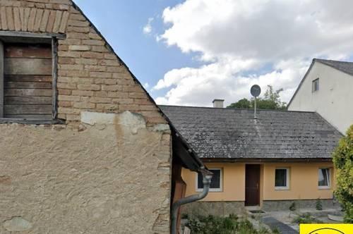 13830 stark sanierungsbedürftiges kleines Häuschen