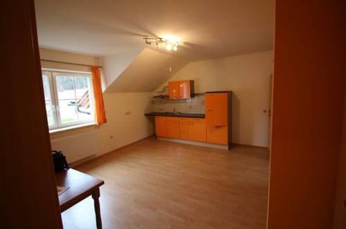 13339 große Wohnküche