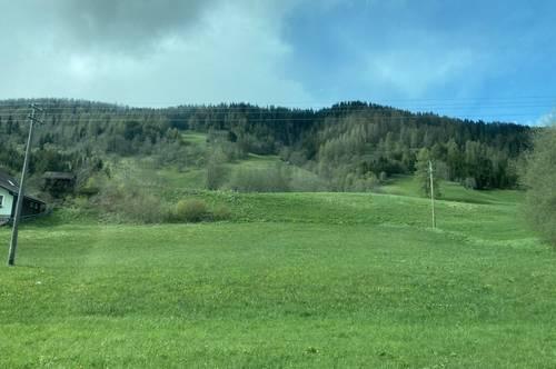 3.824 m² landwirtschaftliche Flächen in Tamsweg zu verkaufen