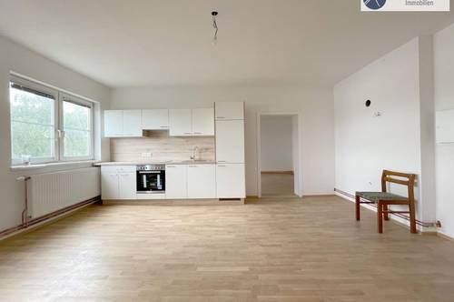 Provisionsfreie 3 Zimmer Wohnung, Neu renoviert!