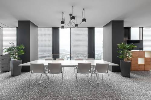 Privatbüro für fünf Personen in Vienna, DC Tower