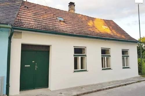 Wochenendhaus in idyllischer Grünruhelage - Wo Fuchs und Hase gute Nacht sagen - Ringelsdorf - Nähe Hohenau