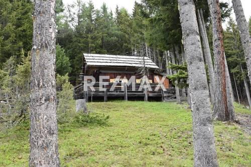 Urige Forsthütte mit Waldparzellen