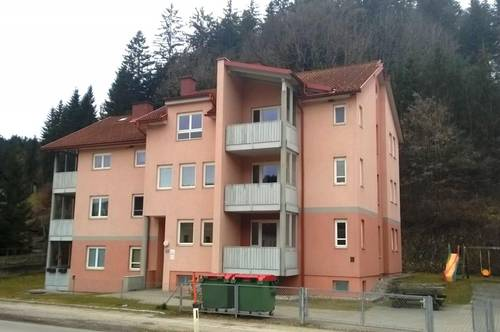 Leistbares Wohnen in Guttaring Nähe Althofen!