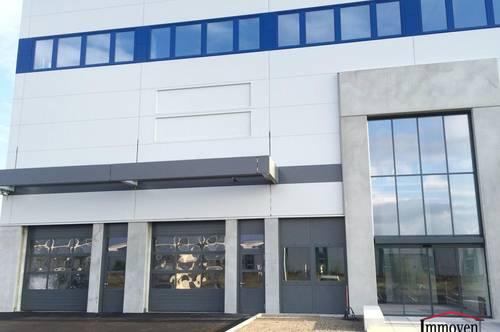 PROVISIONSFREI - Modern strukturiertes Büro kombiniert mit einer Gewerbehalle